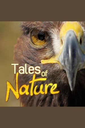 Tales Of Nature