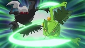 Pokémon Season 13 : The Semi-Final Frontier