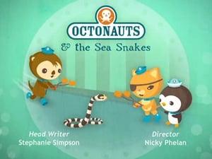 The Octonauts Season 2 Episode 5