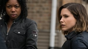 Chicago Police Department: 3×21