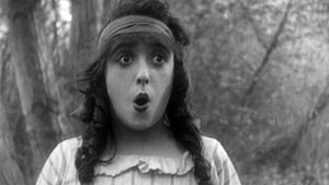 فيلم Won in a Closet 1914
