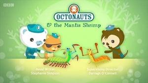 The Octonauts Season 4 Episode 6