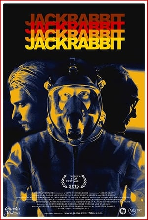 Jackrabbit-Azwaad Movie Database