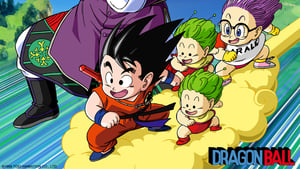 Dragon Ball: Una Aventura Mística