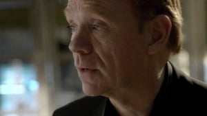 Watch S10E19 - CSI: Miami Online