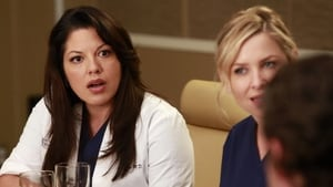 Grey's Anatomy Season 9 : Episode 17