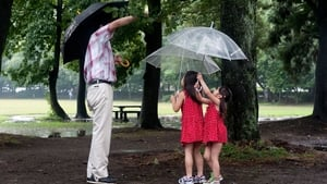 Japanese movie from 2013: Capturing Dad