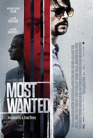 فلم Most Wanted مترجم