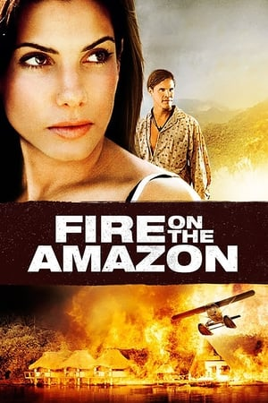 Image Fire on the Amazon