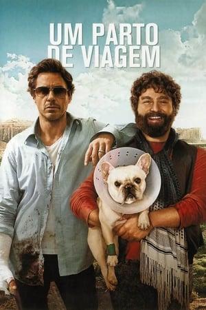 Um Parto de Viagem Torrent, Download, movie, filme, poster