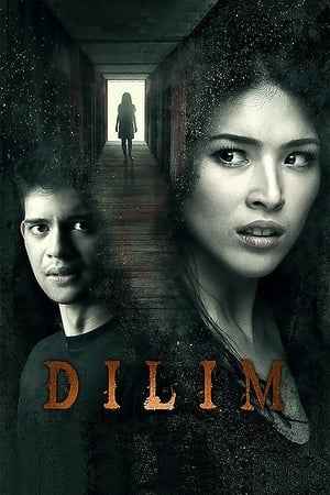 Dilim poster