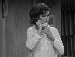 The Dick Van Dyke Show: 5×13