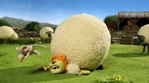 Shaun the Sheep Season 2 Episode 14