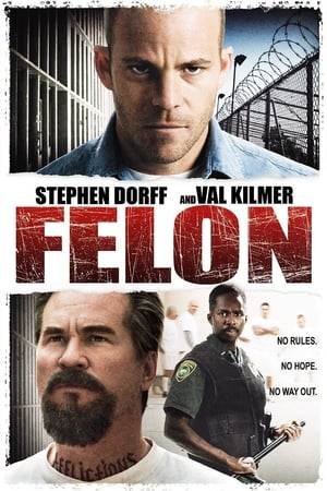 Felon (2008) is one of the best movies like Chicago (2002)