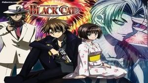 Black Cat – 2005
