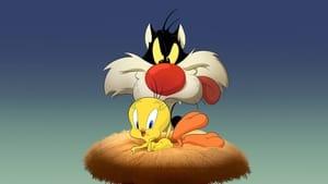 Looney Tunes Cartoons
