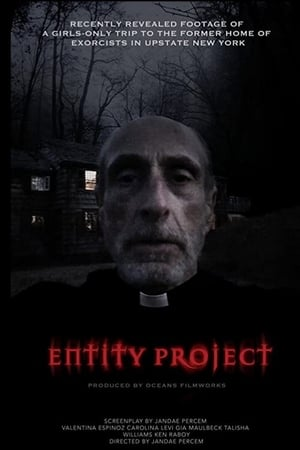 Entity Project (2019)