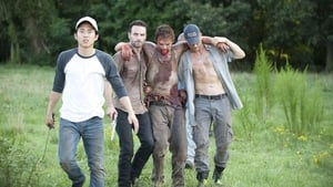 The Walking Dead 2×5