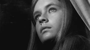 Κορίτσια στον Ήλιο 1968