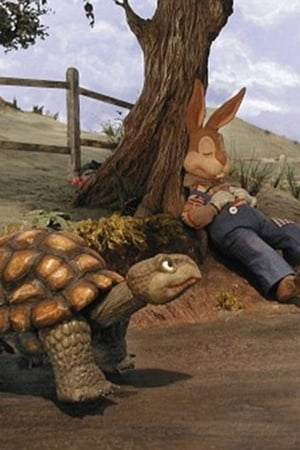 The Story of The Tortoise & the Hare