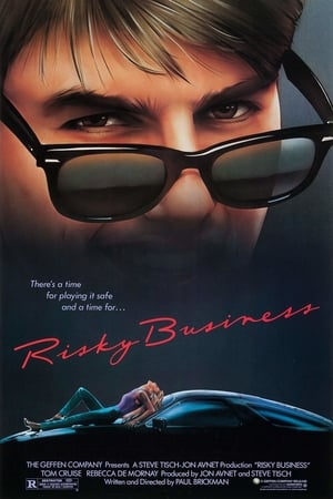 Risky Business (1983) is one of the best movies like American Beauty (1999)