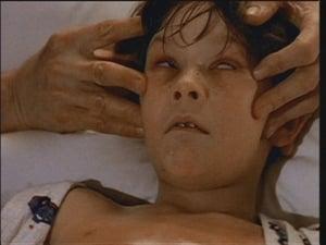 The X-Files S02E021