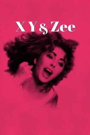 Poster Zee and Co. (1972)