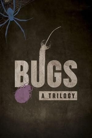 Bugs: A Trilogy (2018)