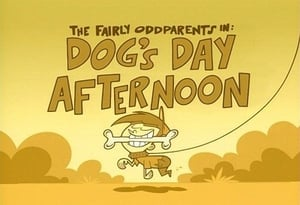 Dog's Day Afternoon