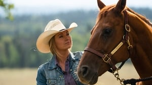 Heartland Season 12 :Episode 9  Long Road Back