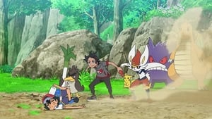 Pokémon Season 23 :Episode 51  The Great Farfetch'd Trial!