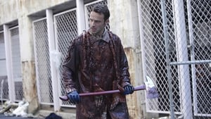 Episodio HD Online The Walking Dead Temporada 1 E2 Tripas