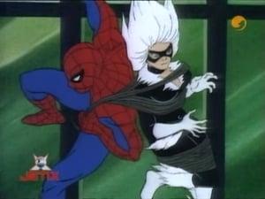 Watch S1E4 - Spider-Man Online