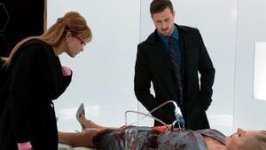 Motive: Season 3 Episode 10