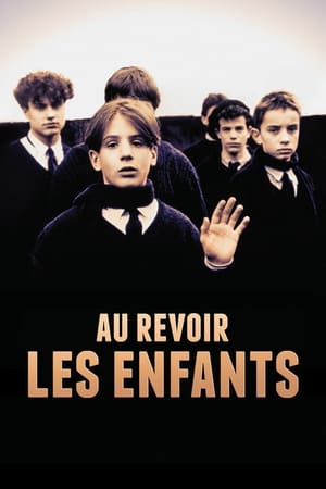 Au Revoir Les Enfants (1987) is one of the best movies like Don Jon (2013)