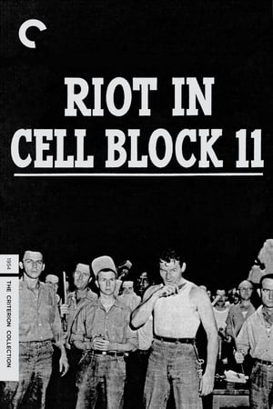 Image Riot in Cell Block 11