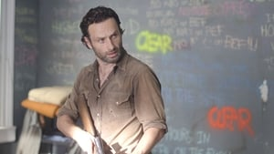 Episodio TV Online The Walking Dead HD Temporada 3 E12 Limpiar