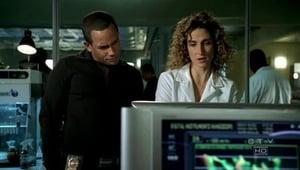 CSI: Kryminalne zagadki Nowego Jorku: 3×10