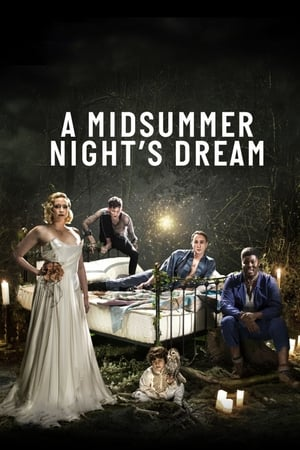 A Midsummer Night's Dream (2019)