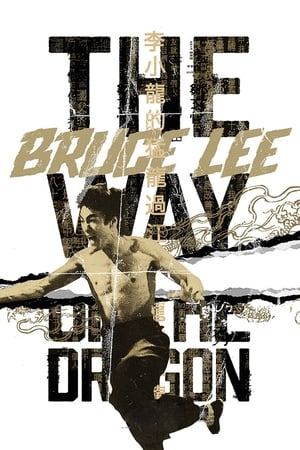 poster The Way of the Dragon