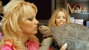 مشاهدة فيلم Blonde and Blonder 2008 أون لاين مترجم