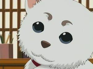 Gintama: 1×10