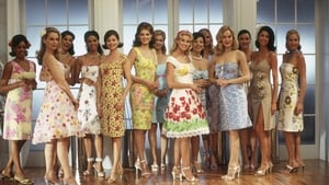 The Stepford Wives 2004 HD Streaming