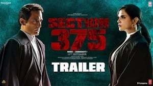 Section 375 (2019) 720p PreDVD Rip