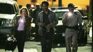 CSI: Kryminalne zagadki Las Vegas: s8e6