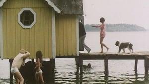 Dog Days 1970
