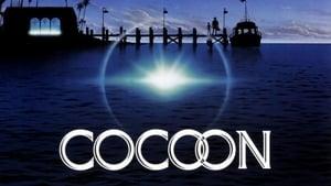 Cocoon: Online Completa en Español Latino