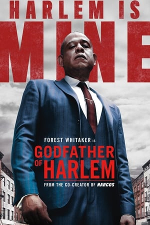 Baixar Godfather of Harlem 1ª Temporada (2019) Dublado via Torrent