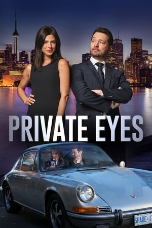 Baixar Private Eyes 3ª Temporada (2019) Dublado via Torrent