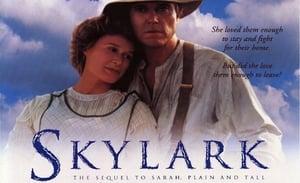 Сара в поисках счастья, Жаворонок / Sarah, Plain and Tall: Skylark
